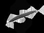 0001-logo silence